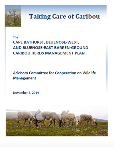 Taking Care of Caribou